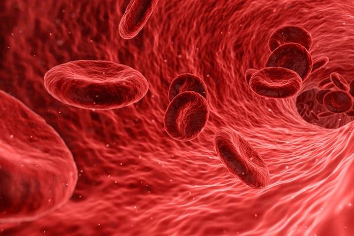 Zadbaj o naczynia krwionośne z Dobenox Forte